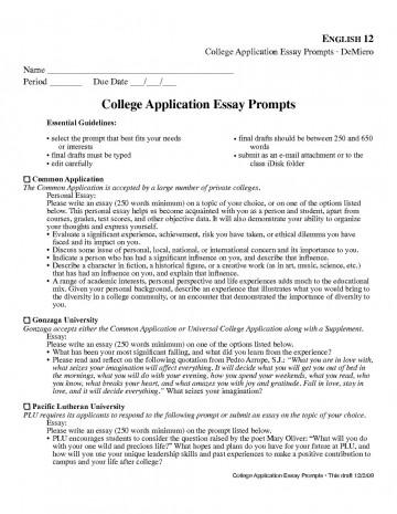 003 Common Application Essay Format Printables Corner College