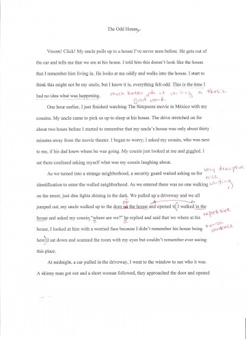 003 Essay Example How To Write Good Biography Sample Biographical