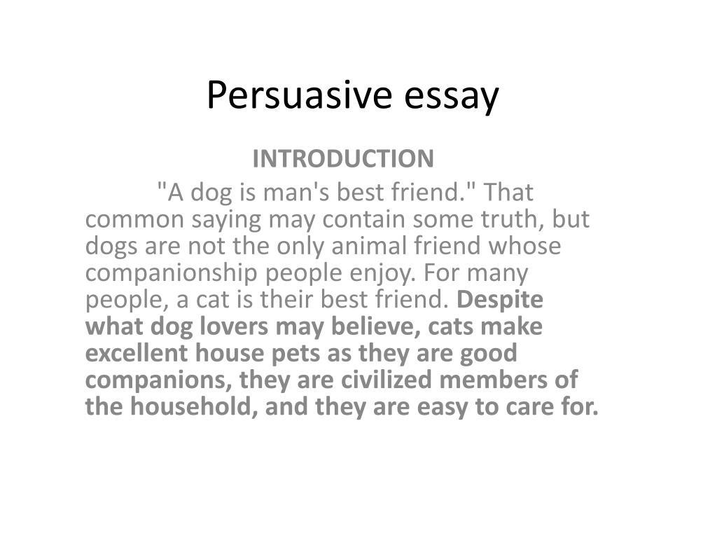 amazing college essay