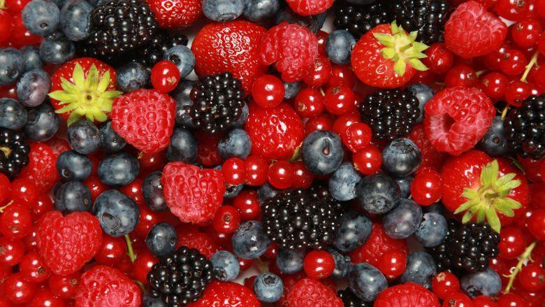 antioxidant guide