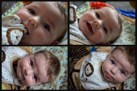 faces of jenson