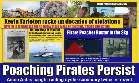 Poaching Pirates Persist