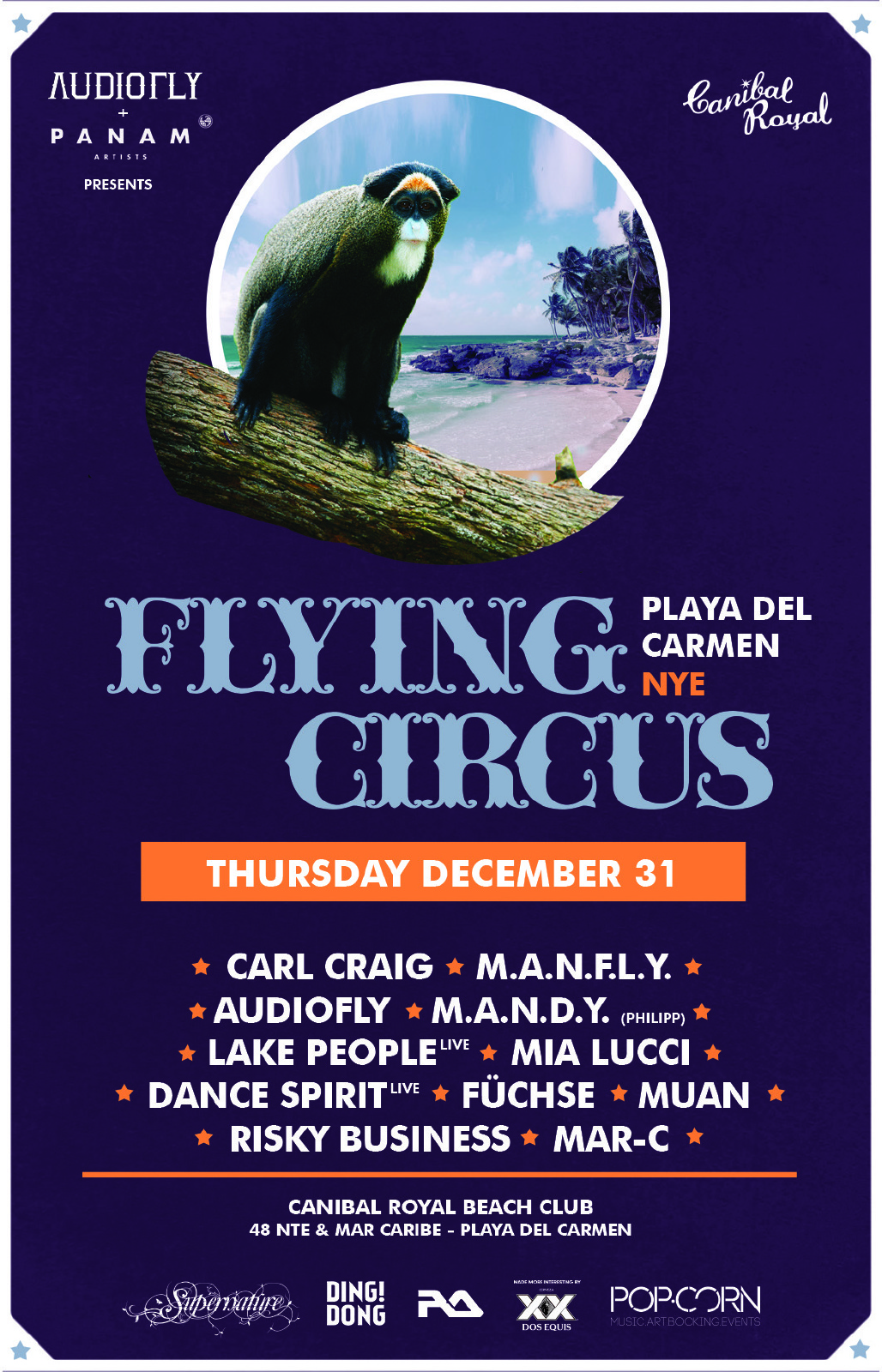 Fllyer Flying Circus