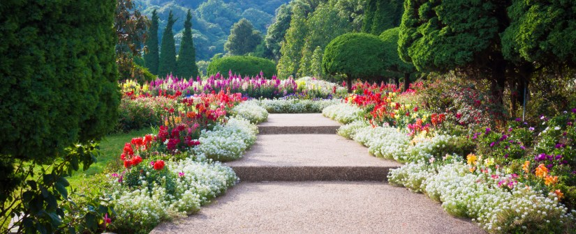 5 Tips to Give You Time to Enjoy Your Healing garden/feed/