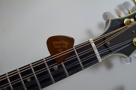 P1020573