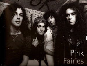 The Pink Fairies (1)