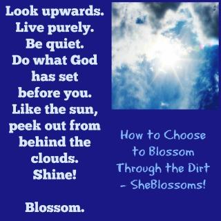 How to Choose to Blossom Through Dirt