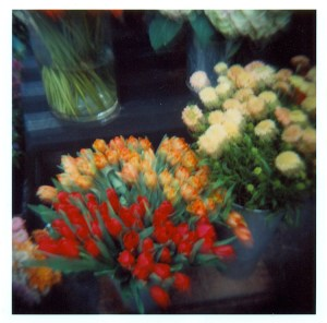 flowers.d