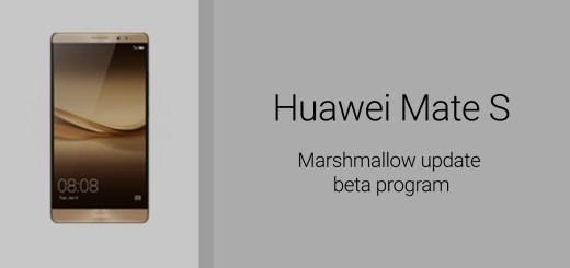 mate s Marshmallow beta program