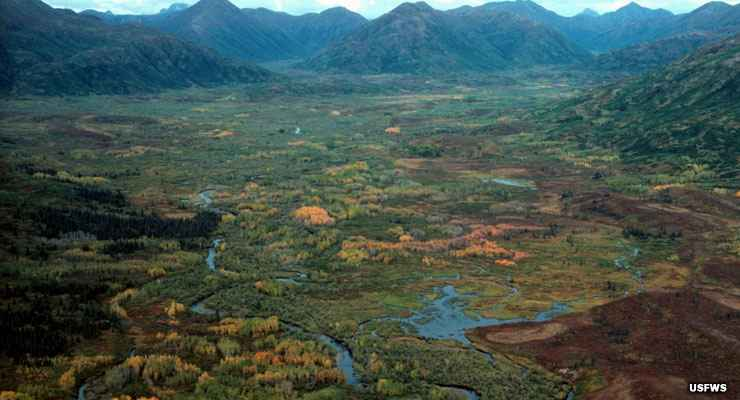Bing Fall Desktop Wallpaper Togiak National Wildlife Refuge Alaska National Wildlife