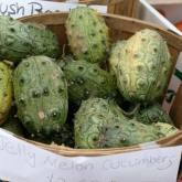 20110915-market-scene-jelly-melon-cucumbers-thumb-500xauto-186999