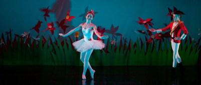 ballet-1381990_960_720