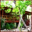 Daoist Spiritual Retreat Weekend