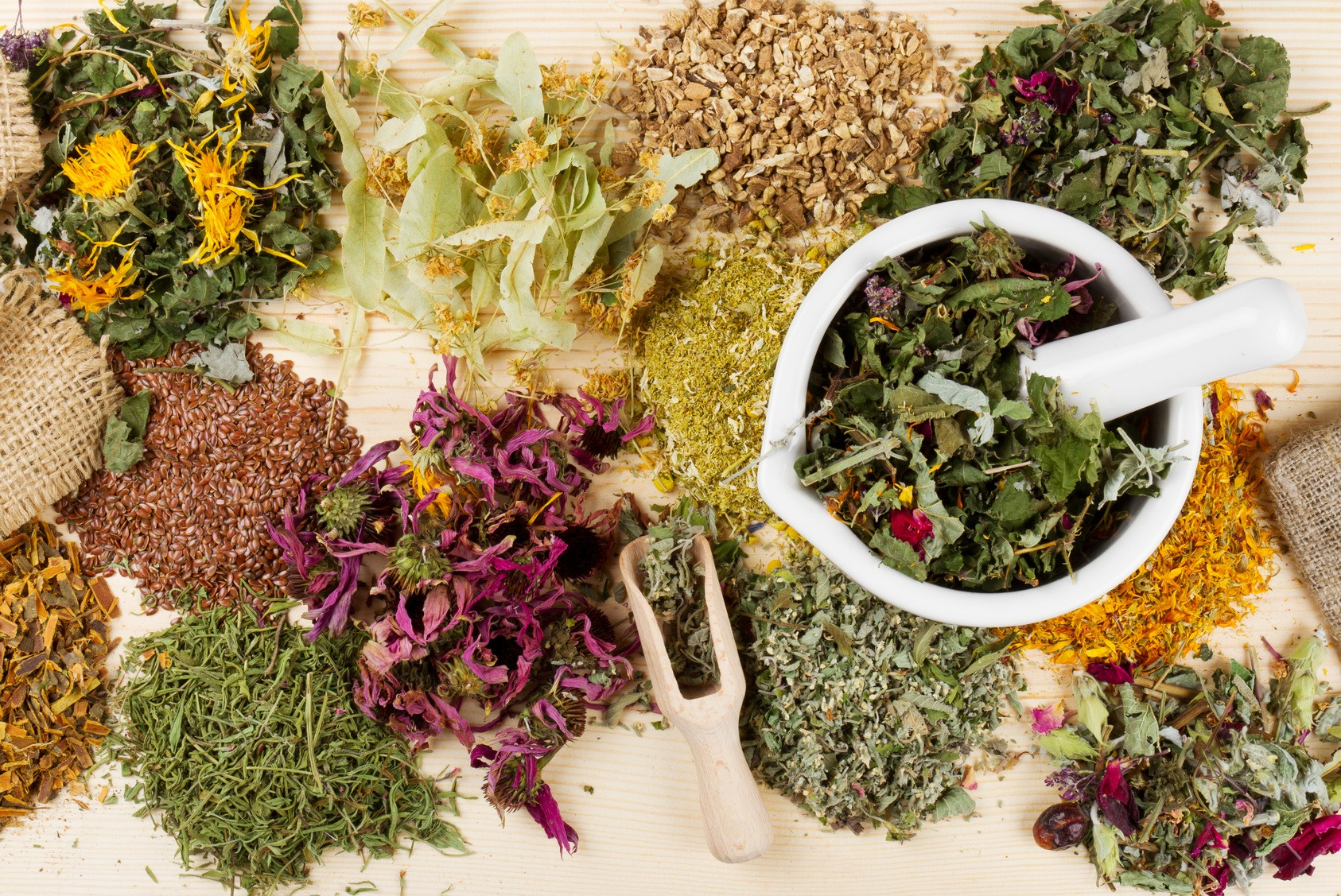 Herbal medicines of cancer zodiac