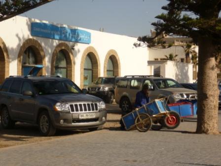 Es blue cart