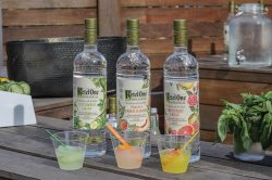 Small Of Ketel One Botanicals