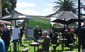 DR8 Caulfield Guineas Day 2016