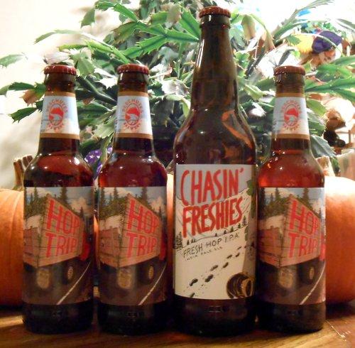 Deschutes fresh hop beers