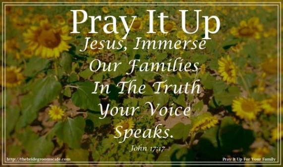 fm John 17-17
