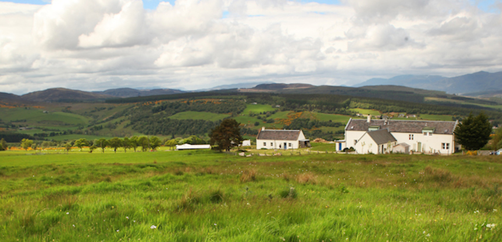 moniackmhor-cropped