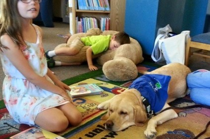 Boy sleeping on Stuffed dog while Harbor sleeps on the job at the Library.