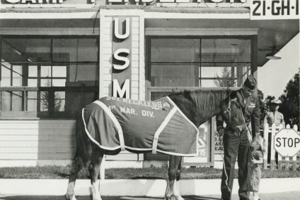 Staff Sgt. Reckless, a decorated war horse, circa 1957. Photo: Courtesy of the San Juan Capistrano Historical Society