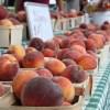 peaches at green city farmers market