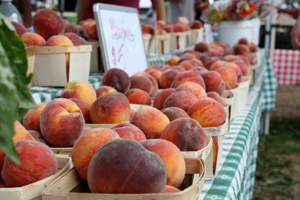 peaches at green city market in Chicago
