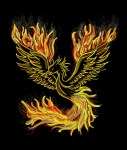 creating value: image of a phoenix