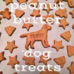 Small Of Grain Free Dog Treat Recipes