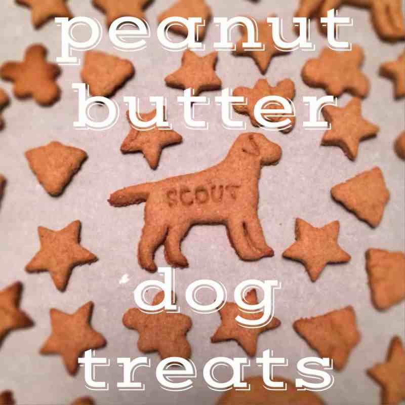Large Of Grain Free Dog Treat Recipes