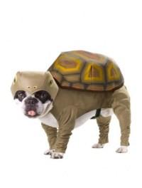 Tortoise Dog Costume