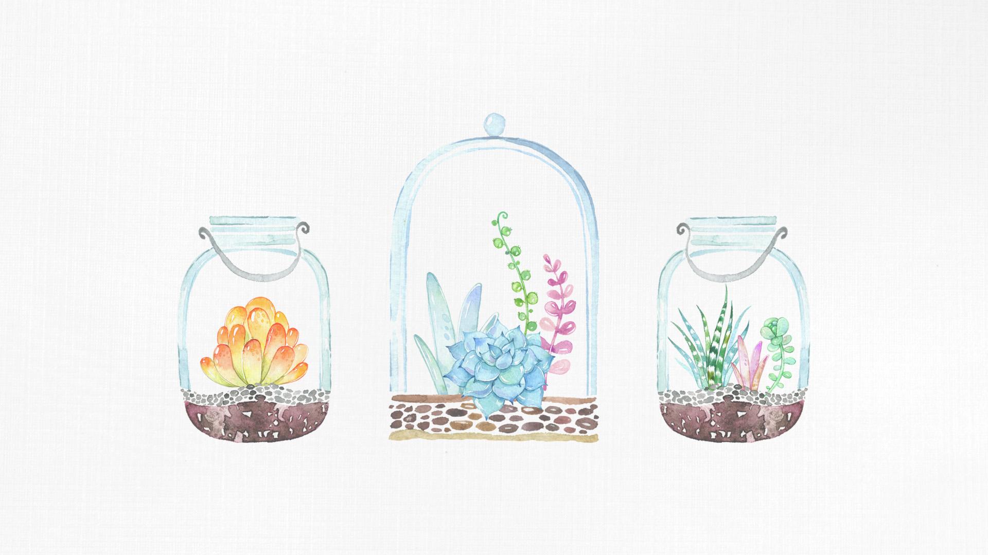 Cute Cactus Wallpaper Macbook Free Desktop Wallpaper Mason Jar Succulents The