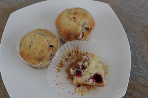 fresh cranberry muffins