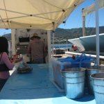 Tomales Bay Buy Oysters