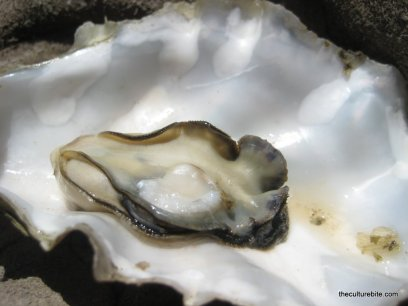 Tomales Bay Cooked Oyster