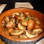 LaLoLa Mushrooms