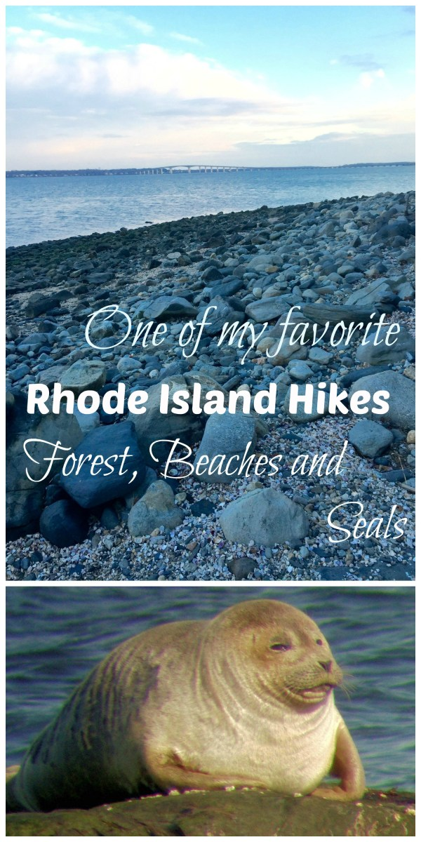 My Favorite New England Hike: Beach, Forest and Seals in North Kingstown, RI