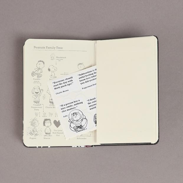 moleskine_peanuts_notebooks__968