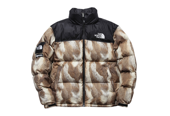Supreme-The-North-Face-AW13-Outwerwear-06