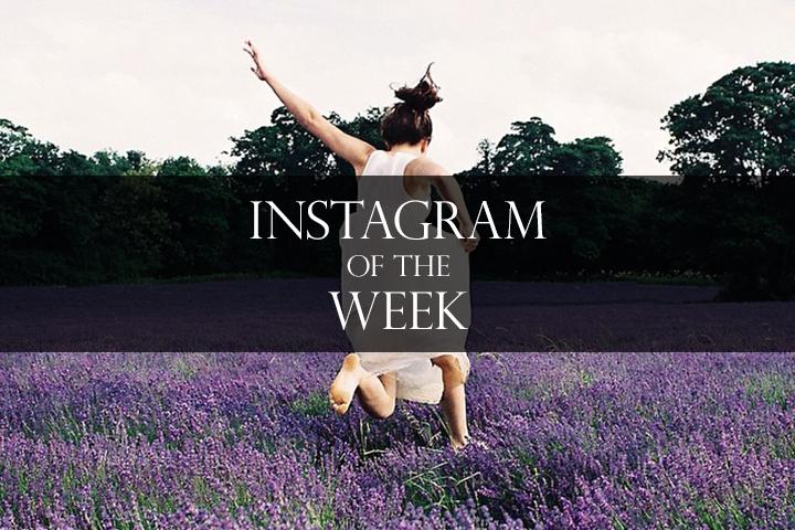 Instagram-of-the-week-holliefernando
