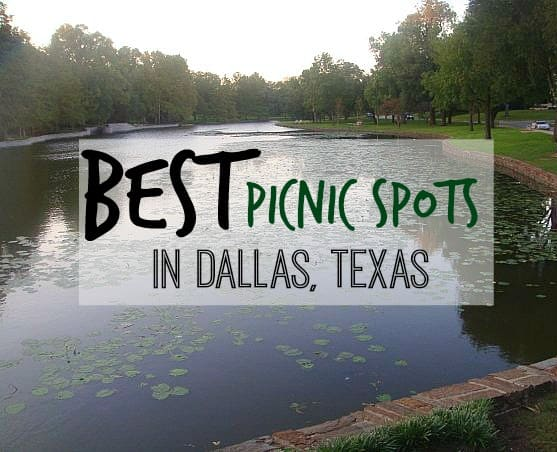 The Best Picnic Spots in Dallas Tx #travel