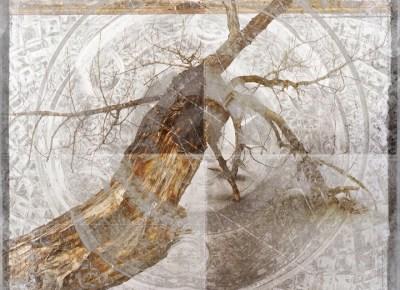 Winter copy - Kate Zari Roberts