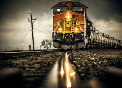 In the Headlights by Everett Hindman