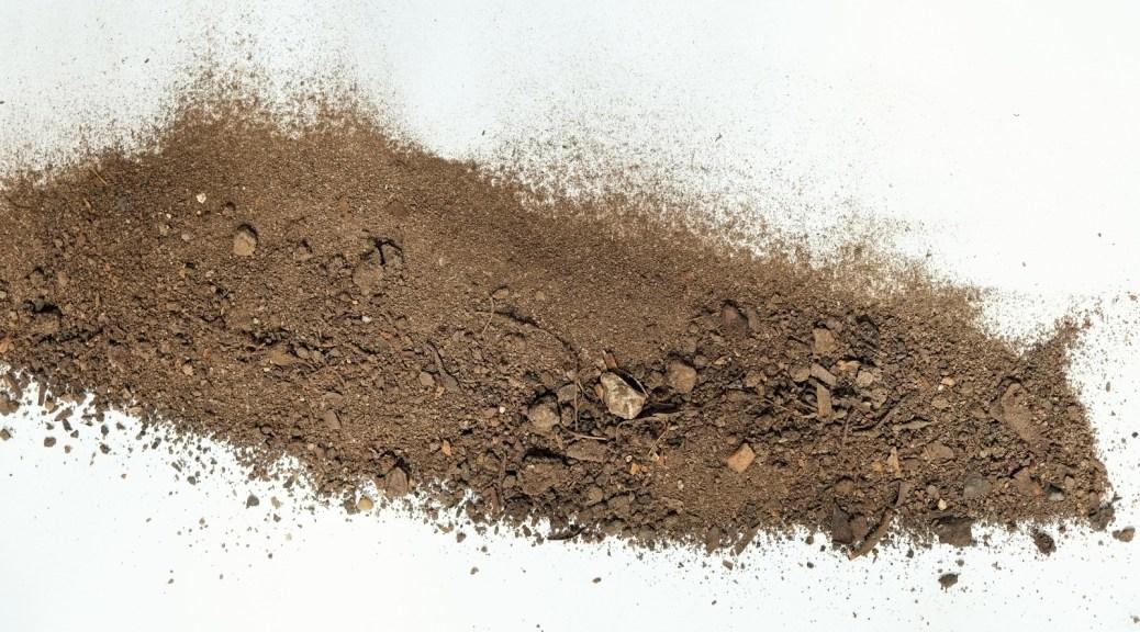 dry-poor-sandy-soil-devoid-nutrients-dead