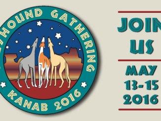 Greyhound Gathering