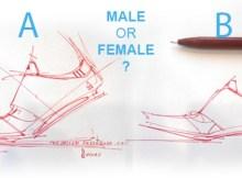 gendermalefemaledesigntheDesignSketchbook.jpg