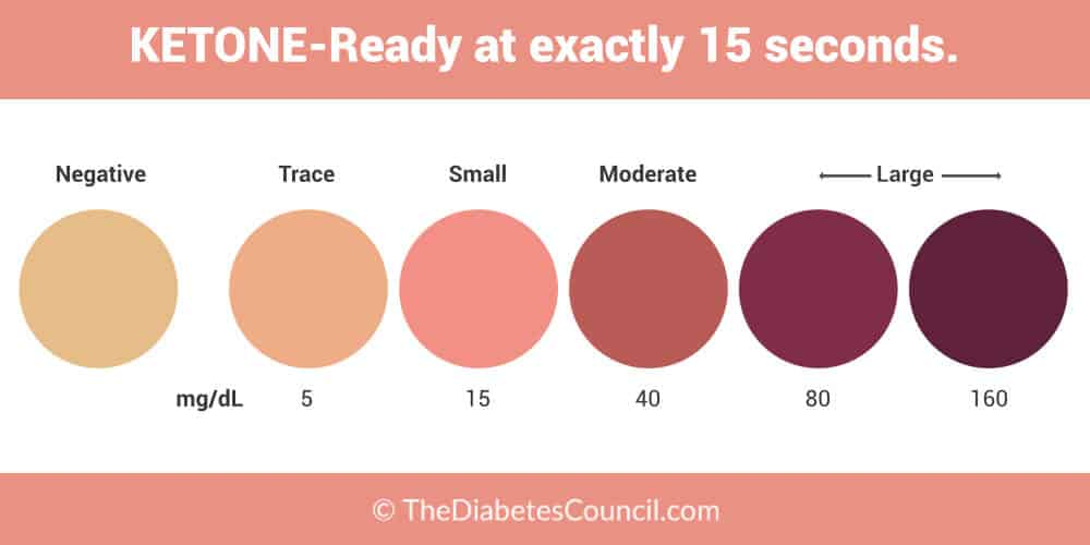 The Ultimate Guide to Ketone Testing - TheDiabetesCouncil