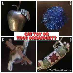cattoy-or-ornament
