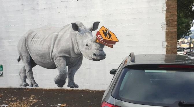 rhino-art